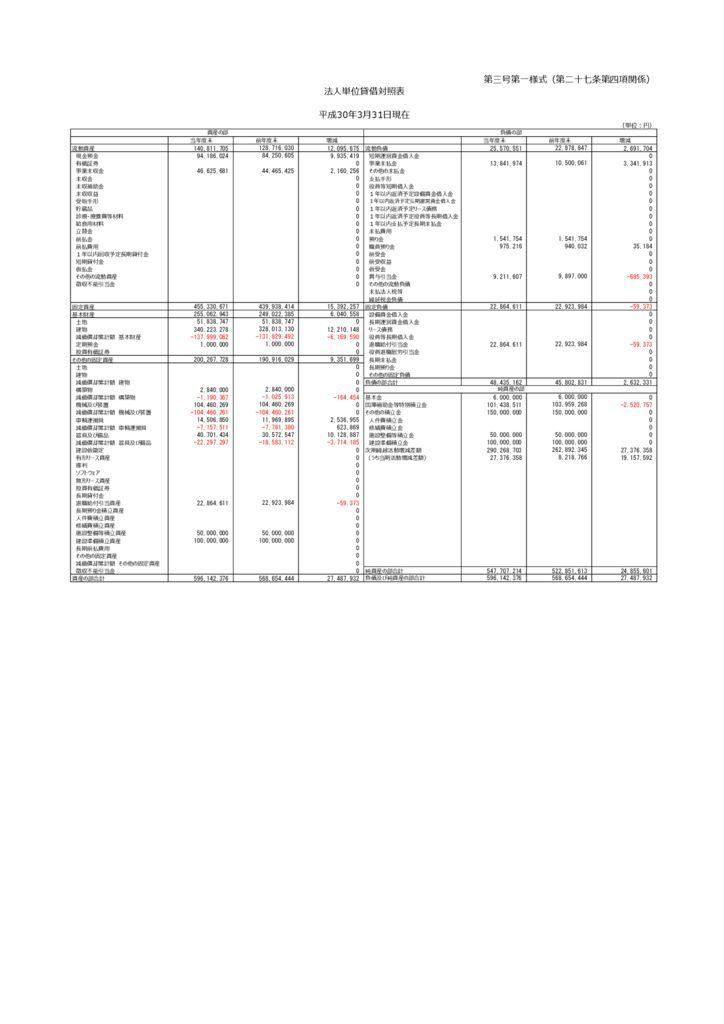 平成30年度_貸借対照表(第三号第一様式)のサムネイル